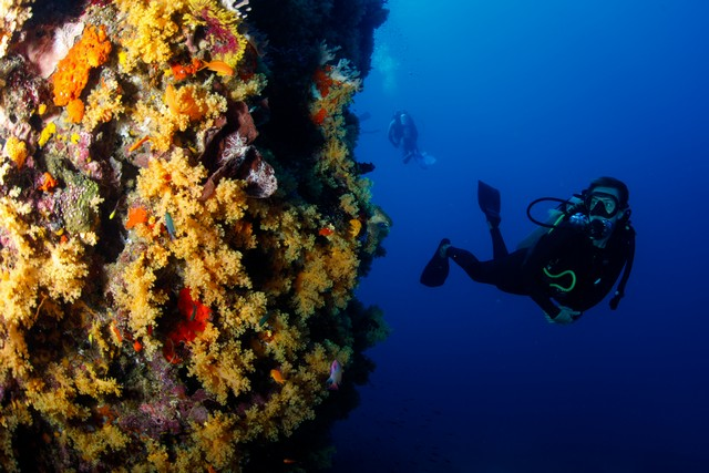 Namena Marine reserve,image:BrettMonroeGarner